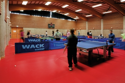 Table tennis and badminton solutions